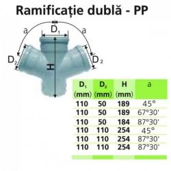 RAMIFICATIE DUBLA PP