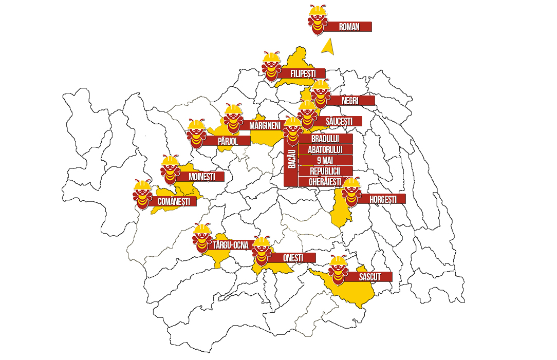 Harta retea magazine Vasion Bacau/Roman